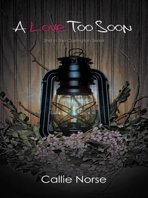 A Love Too Soon  by  Callie Norse