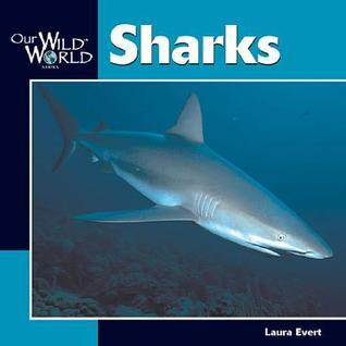 Sharks  by  Laura Evert