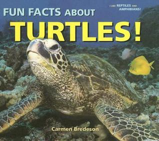 Fun Facts about Turtles! Carmen Bredeson