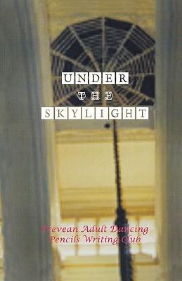 Under the Skylight  by  Felicity Keats