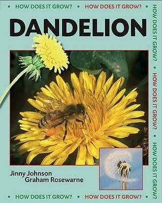 Dandelion. Jinny Johnson Jinny Johnson