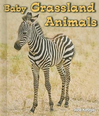 Baby Forest Animals Jane Katirgis