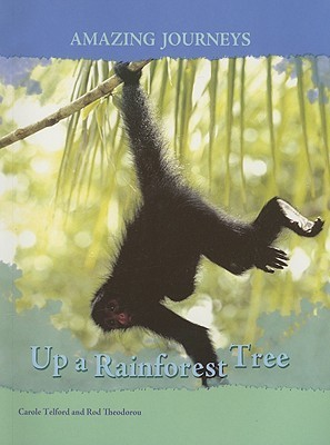 Up a Rainforest Tree  by  Carole Telford
