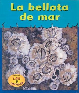 La Bellota de Mar = Barnacles Lola M. Schaefer