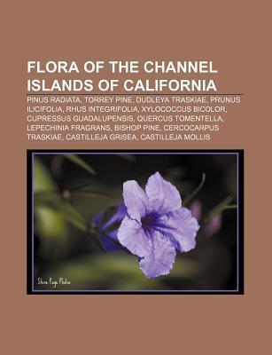 Flora of the Channel Islands of California: Pinus Radiata, Torrey Pine, Dudleya Traskiae, Prunus Ilicifolia, Rhus Integrifolia Source Wikipedia