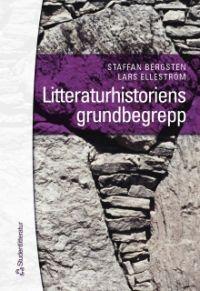 Den trösterika gåtan  by  Staffan Bergsten