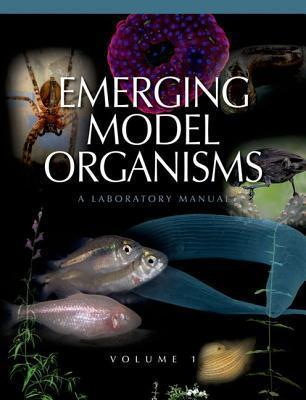 Emerging Model Organisms, Volume 1: A Laboratory Manual  by  Richard R. Behringer