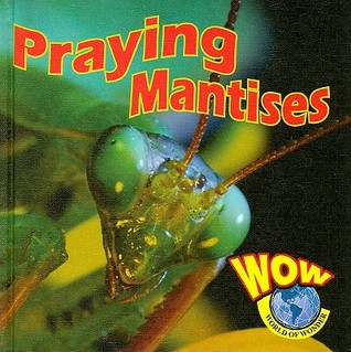 Praying Mantises Heather C. Hudak