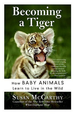 Becoming a Tiger: How Baby Animals Learn to Live in the Wild Susan McCarthy