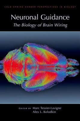Neuronal Guidance: The Biology of Brain Wiring  by  Marc Tessier-Lavigne