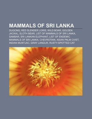 Mammals of Sri Lanka: Dugong, Red Slender Loris, Wild Boar, Golden Jackal, Sloth Bear, List of Mammals of Sri Lanka, Sambar  by  Source Wikipedia