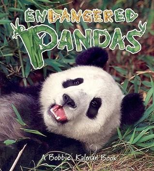 Endangered Pandas John Crossingham