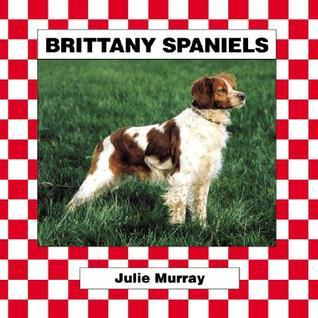 Brittany Spaniels Julie Murray
