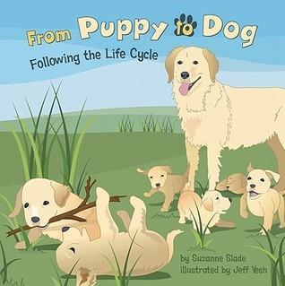 From Puppy to Dog: Following the Life Cycle  by  Suzanne Buckingham Slade