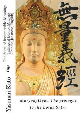 The Sutra of Innumerable Meanings: The Prologue to the Lotus Sutra.  by  Mr Yasunari Kato