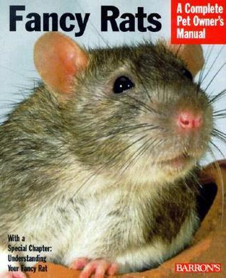Fancy Rats  by  Gisela Bulla