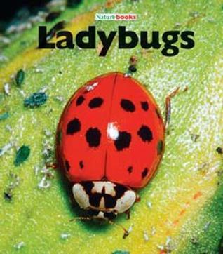 Ladybugs  by  M.C. McBee
