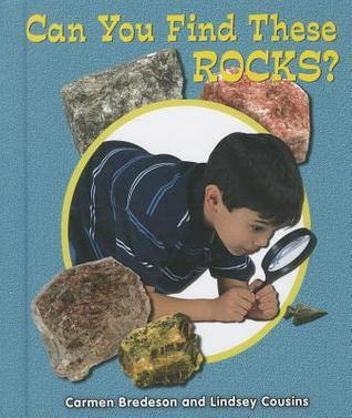 Can You Find These Rocks?  by  Carmen Bredeson