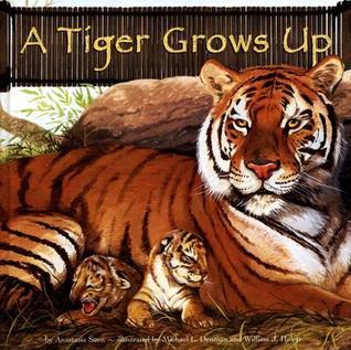 A Tiger Grows Up Anastasia Suen