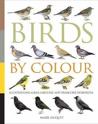 Birds By Colour Marc Duquet