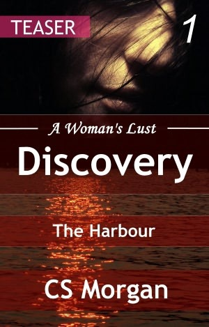 A Womans Lust 1: The Harbour  by  C.S. Morgan