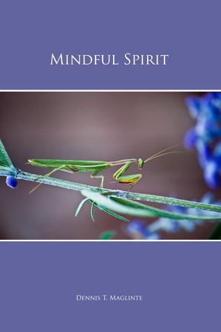 Mindful Spirit  by  Dennis T. Maglinte