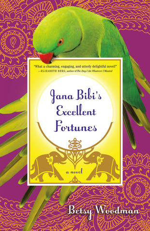 Jana Bibis Excellent Fortunes: A Novel  by  Betsy Woodman