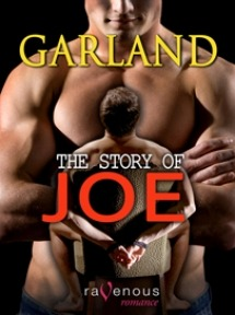 The Story of Joe  by  Garland