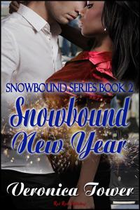 Snowbound New Year (Snowbound, #2)  by  Veronica Tower