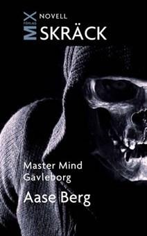 Master Mind Gävleborg  by  Aase Berg