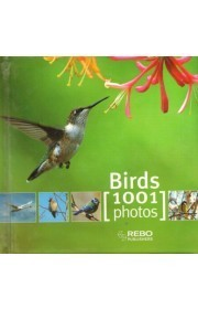 Birds 1001 photos  by  Rebo Publishers
