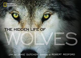 The Hidden Life of Wolves Jim Dutcher