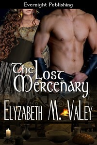 The Lost Mercenary (The Mercenary Tales, #3) Elyzabeth M. VaLey