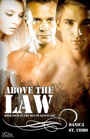 Above the Law (The Men of Sanctuary, #4)  by  Danica St. Como