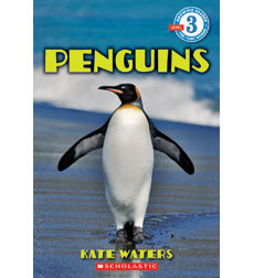 Penguins  by  Kate Waters
