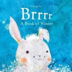 Brrrr: A Book of Winter. Il Sung Na by Il Sung Na