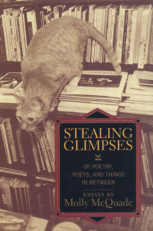 Stealing Glimpses: Of Poetry, Poets, and Things In Between / Essays Molly McQuade