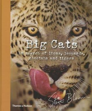 Big Cats: In Search of Lions, Leopards, Cheetahs, and Tigers  by  Steve Bloom