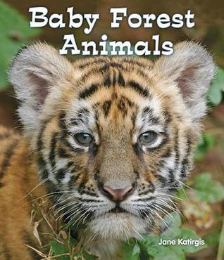 Baby Backyard Animals  by  Jane Katirgis