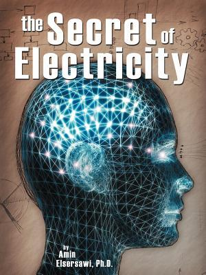 Secret of Electricity  by  Amin Elsersawi