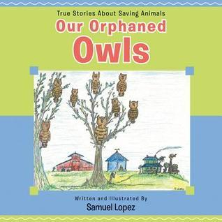 Our Orphaned Owls Samuel Lopez