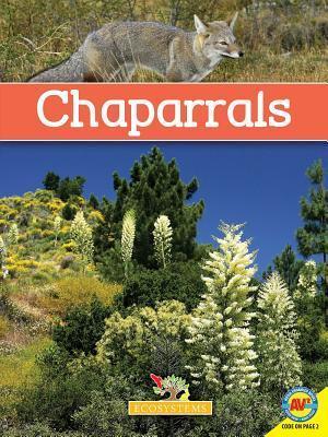 Chaparrals  by  Michael De Medeiros