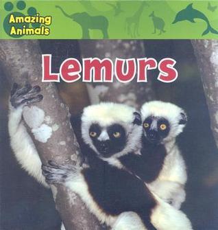 Lemurs  by  Kate    Delaney