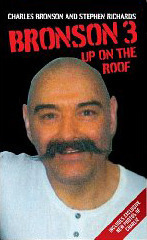 Bronson 3: Up on the Roof  by  Charles Bronson