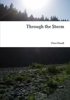 Through the Storm  by  Clara Staudt