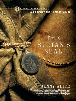 The Sultans Seal: A Novel Jenny White