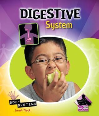 Digestive System  by  Sarah Tieck