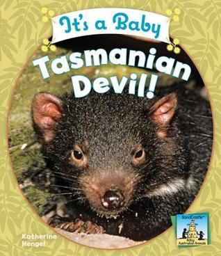 Its a Baby Tasmanian Devil!  by  Katherine Hengel