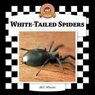 White-Tailed Spiders Jill C. Wheeler