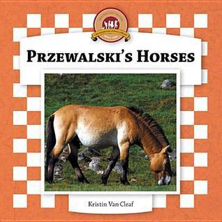 Przewalskis Horses Kristin Van Cleaf